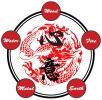gym Xinyi-Dao Kung Fu Academy